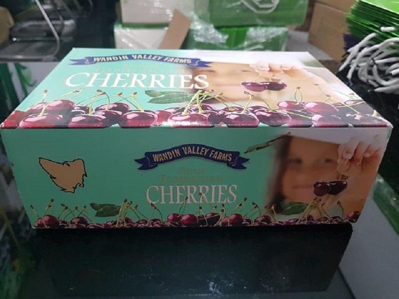 Mẫu hộp dùng được trái cây cherry