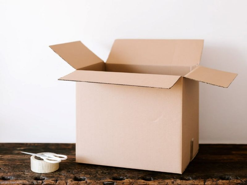 Hình 2: Bao bì giấy dạng thùng carton