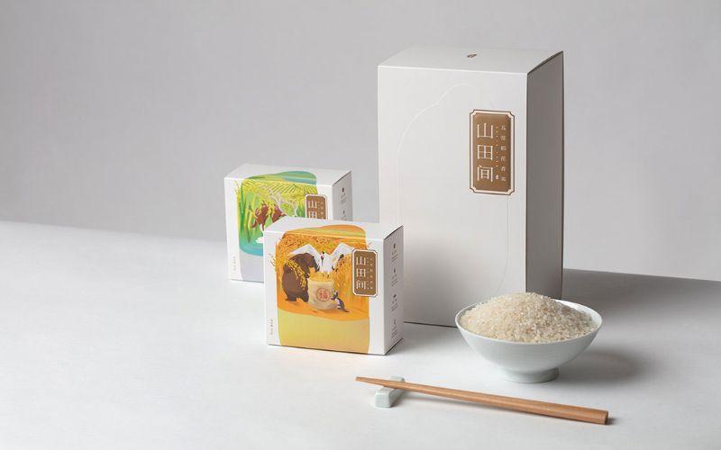 Hình 3: Bao bì gạo dạng hộp giấy tinh tế